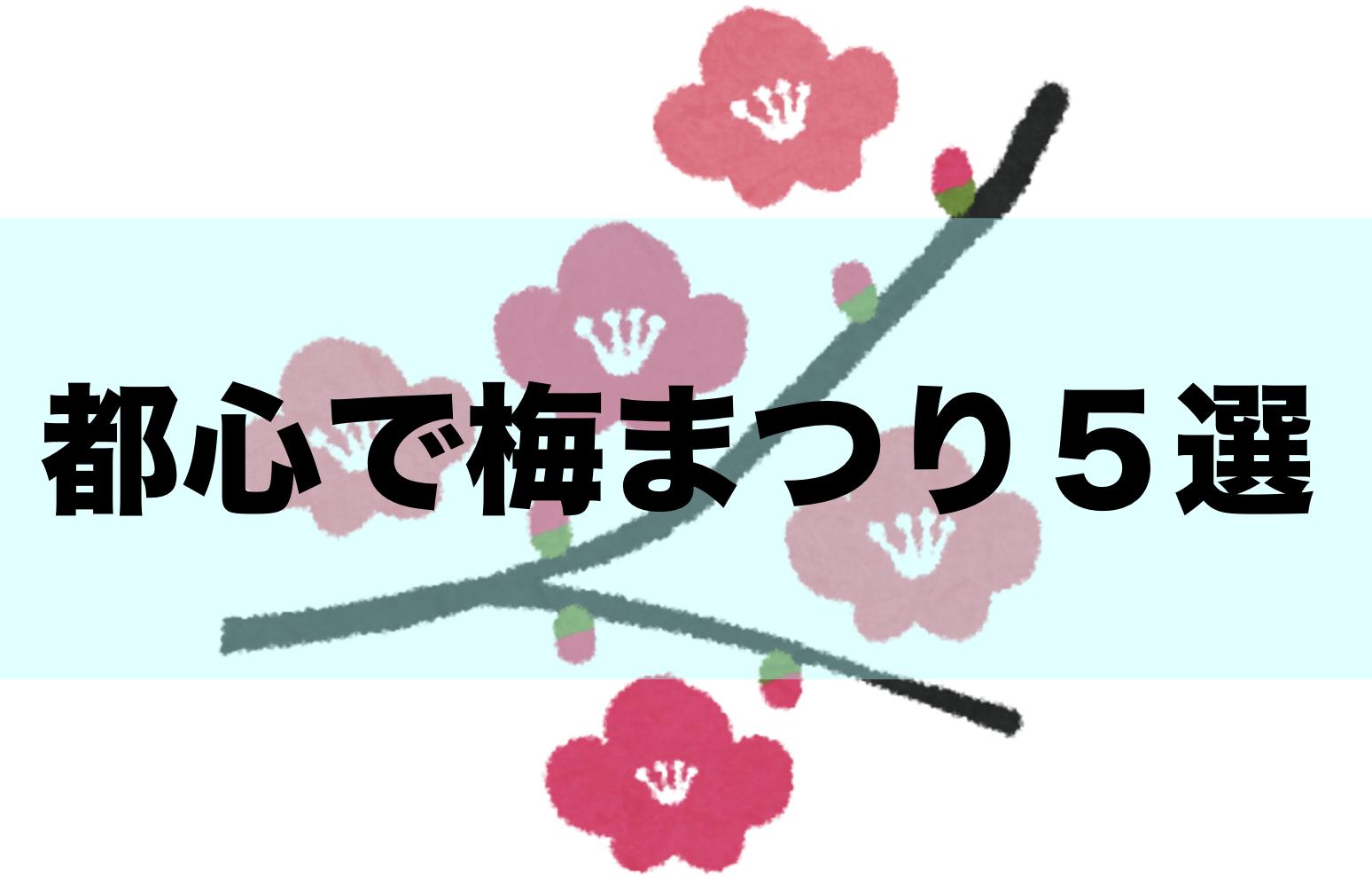 【東京】都心で梅の花2020、梅まつりとおすすめスポット5選!