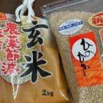 玄米の美味しい食べ方!24時間水に漬けて普通の鍋で炊いてカレーをかける!